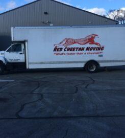 Red Cheetah Moving
